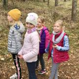 Odkrywamy tajemnice lasu